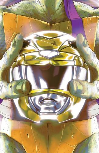 MIGHTY MORPHIN POWER RANGERS TEENAGE MUTANT NINJA TURTLES #2 DONATELLO COVER