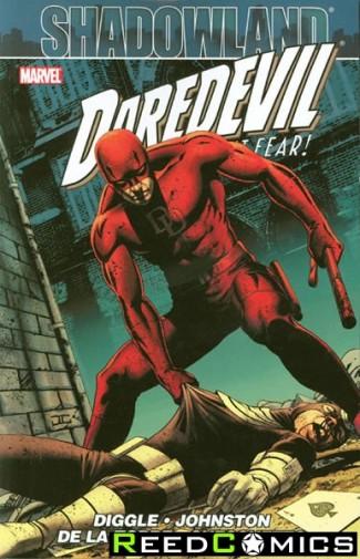 Shadowland Daredevil Graphic Novel