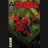 TRUTH AND JUSTICE #5