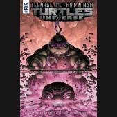 TEENAGE MUTANT NINJA TURTLES UNIVERSE #22