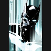 BATMAN URBAN LEGENDS #4 DUSTIN NGUYEN VARIANT