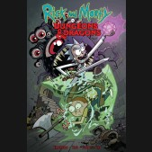 RICK AND MORTY VS DUNGEONS AND DRAGONS GRAPHIC NOVEL
