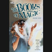 BOOKS OF MAGIC BOOK 1 GRAPHIC NOVEL
