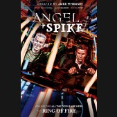 ANGEL AND SPIKE VOLUME 1 ALL THE DEVILS ARE HERE GRAPHIC NOVEL