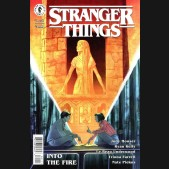 STRANGER THINGS INTO THE FIRE #1