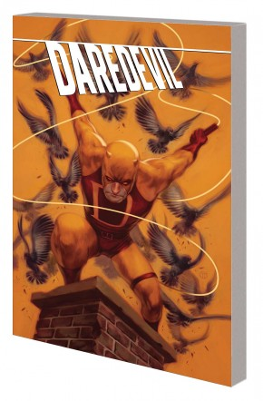 DAREDEVIL FEARLESS ORIGINS GRAPHIC NOVEL