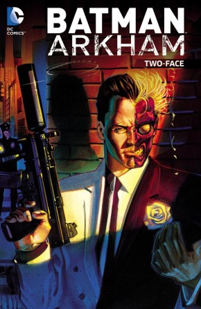 BATMAN ARKHAM TWO FACE GRAPHIC NOVEL