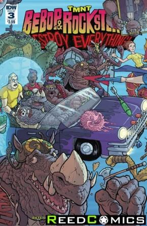 Teenage Mutant Ninja Turtles Bebop and Rocksteady Destroy Everything #3