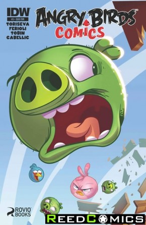 Angry Birds #5 (Subscription Variant Cover)