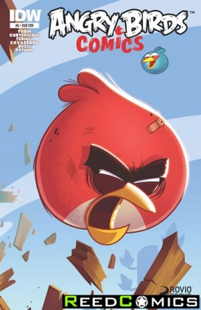 Angry Birds #6 (Subscription Variant Cover)