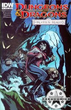 Dungeons and Dragons Forgotten Realms #3 (Cover B)
